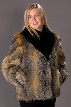 Grey fox jacket with plucked sheared and dyed beaver collar