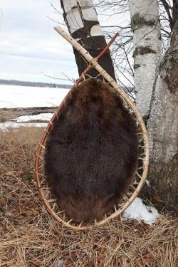 Beaver Hoop